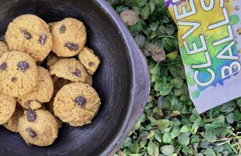 Exalumna de Diseño UDD crea galletas saludables y amigables con el medio ambiente